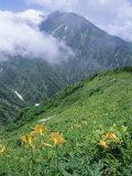 The Tateyama-Kurobe Alpine Route, Northern Alps, Japan Photographic Print by Chris Kober