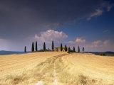 Cottage and Cypress Trees Near Pienza, Val d&#39;Orcia, Siena Province, Tuscany, Italy, Europe Photographic Print by Sergio Pitamitz