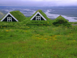 Turf Roof Houses in the South of the Island, Skaftafell National Park, Iceland Photographic Print by Chris Kober