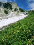 Hikers En Route to Mt. Hakuba Glacier, Northern Alps, Japan Photographic Print by Chris Kober