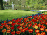Keukenhof Gardens, Keukenhof, Netherlands Photographic Print by Chris Kober