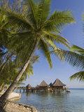 Kia Ora Resort, Rangiroa, Tuamotu Archipelago, French Polynesia, Pacific Islands, Pacific Photographic Print by Sergio Pitamitz