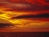 Dramatic Sky and Red Clouds at Sunset, Antarctica,, Polar Regions Photographic Print by David Tipling