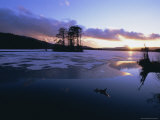 Winter Landscape, Loch Mallachie, Speyside, Scotland, UK, Europe Photographic Print by David Tipling