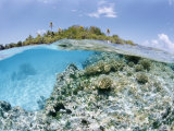 Tikeau, Tuamotu Archipelago, French Polynesia, Pacific Islands, Pacific Photographic Print by Sergio Pitamitz