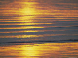 Golden Light on Ripples on the Sea Shore Photographic Print by David Tipling