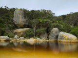 River, Tidal River, Wilsons Promontory, Victoria, Australia Photographic Print by Thorsten Milse