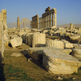 The Ruins at Palmyra, Syria Photographic Print by Michael Jenner