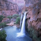 Havasu Falls, Grand Canyon, United States of America (U.S.A.), North America Photographic Print by Tony Gervis
