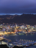 Panoramic View of City Centre at Night, North Island, New Zealand Photographic Print by Chris Kober