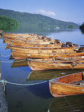 Rowing Boats and Lake Windermere, Cumbria, England Photographic Print by David Hunter