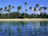East Coast, Motu Nao Nao, Raiatea Island, Society Islands Archipelago, French Polynesia Photographic Print by J P De Manne