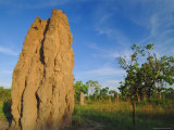 Termite 'Cathedral' by the Arnhem Highway Near the Mary River Crossing Between Darwin and Kakadu Photographic Print by Robert Francis