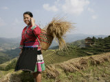 Woman of Yao Minority with Cellphone, Longsheng Terraced Ricefields, Guangxi Province, China Photographic Print by Angelo Cavalli
