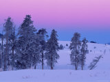 Winter Landscape, Yellowstone National Park, Unesco World Heritage Site, Wyoming, USA Lámina fotográfica por Colin Brynn
