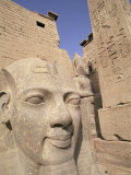 Statue of the Pharaoh Ramses II, Luxor Temple, Thebes, Unesco World Heritage Site, Egypt Photographic Print by Nico Tondini