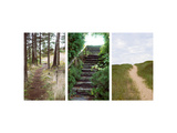 Sandy Beach Path over a Grassy Hill Posters