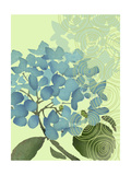 Hydrangea in Blue Posters