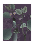 Eggplant Evening Poster