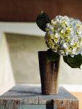 Hydrangea Rustic Vase Photo