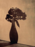 Vase of Flowers Casts Shadow at Sunset II Posters