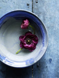 Small Blue Bowl, Two Flowers Poster