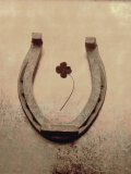 Lucky Horse Shoe on Dusty Rose Metallic IV Poster
