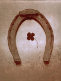 Lucky Horse Shoe on Dusty Rose Metallic I Posters
