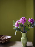 Olive Ambiance, Plum Dahlias Photo