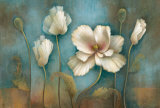 Poppy Melody Prints by Elaine Vollherbst-Lane
