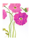 Watercolor Floral Photo