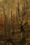 Into The Forest I Giclee Print by Jennie Tomao