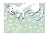 Miss Kitty Enjoys Summertime Prints