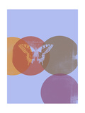 Butterfly Screen Posters