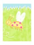 Buzzing Ladybug Photo