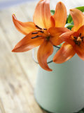 Orange Lilies in White Pail Photo