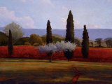 St. Saturnin Olives Giclee Print by Kent Lovelace