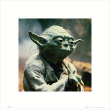 Star Wars - Yoda Kunstdrucke