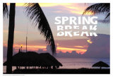 Spring Break Print by Marilu Windvand