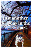 Just Another Day Poster by Marilu Windvand