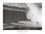 Bahía de Waimea, Hawai Pósters por Bill Romerhaus