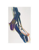 Ballet Slippers, c.1981-82 Art by Andy Warhol