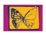 Andy Warhol - Vanishing Animals: Butterfly, c.1986 (Yellow on Purple) Plakát
