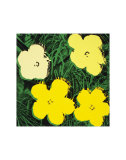 Flowers, c.1970 (Yellow) Kunst af Andy Warhol