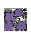 Flowers, c.1965 (Purple) Posters par Andy Warhol