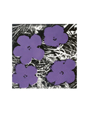 Flowers, c.1965 (Purple) Poster von Andy Warhol