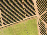 Citrus Farms in Morocco's Productive Mediterranean Agricultural Zone Photographic Print by Michael Fay
