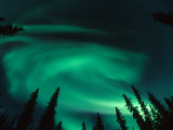 Aurora Borealis Swirling in the Night Sky, Alaska Fotografie-Druck von Michael S. Quinton