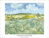 Die Ebene bei Auvers, c.1890 Art by Vincent van Gogh