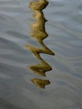 Abstract Reflection of a Post in the Water, Groton, Connecticut Photographic Print by Todd Gipstein